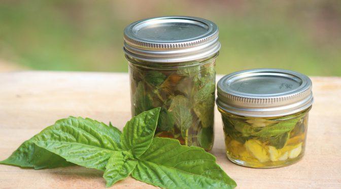 Herbal Infused Oils & Vinegars