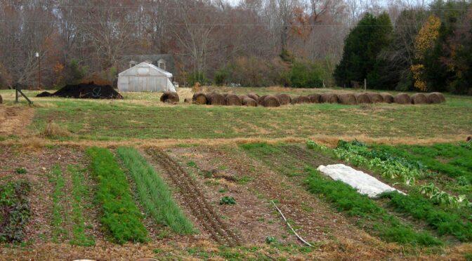 Garden Checklist: Late Sept. & Oct.