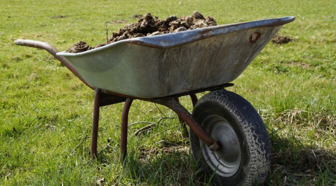 Using Manure in the Garden